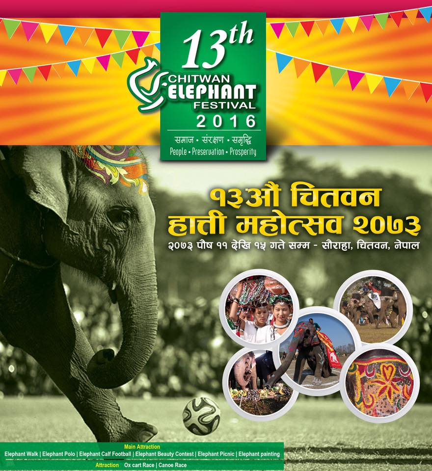 13th Chitwan Elephant Festival 2016