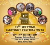 Chitwan Elephant fest slated to start Dec 26