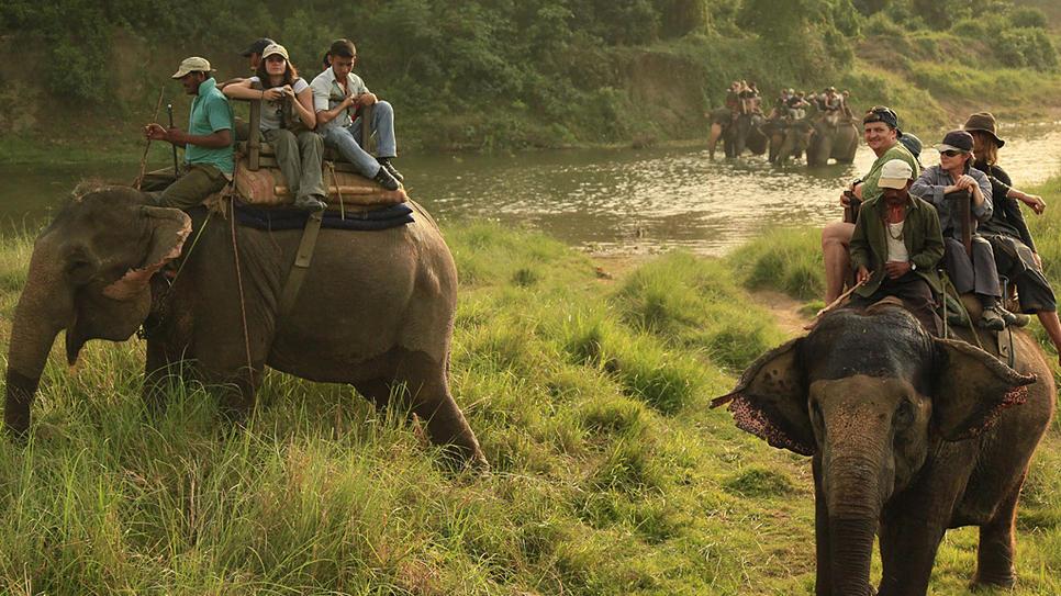 Chitwan -safari-nepal_966x543