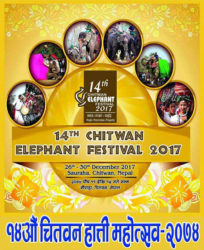 14 Chitwan Elephant Festival 2017