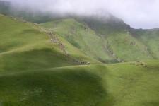 TAAN explores Badi Malika area in Bajura