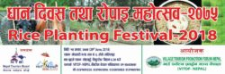 VITOF Nepal organizes Rice Planting Festival at Lele